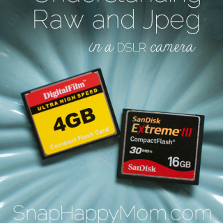 Understanding Raw vs. Jpeg in a DSLR camera