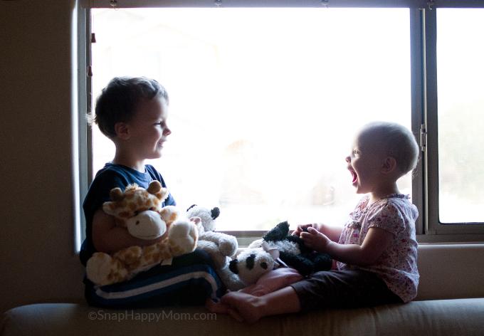 Dash and Brighton at the window - SnapHappyMom.com
