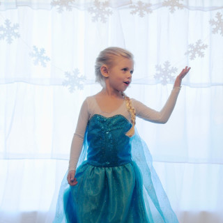 DIY Frozen Backdrop for Fancy Elsa Photos